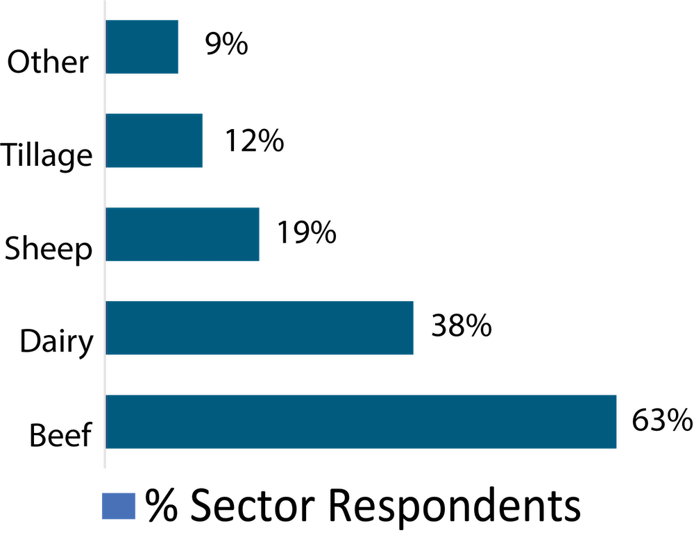 Sectors Analysed