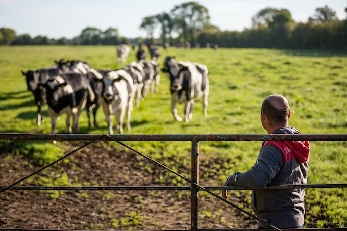 Irish farmers invited to share their views about the future of farming