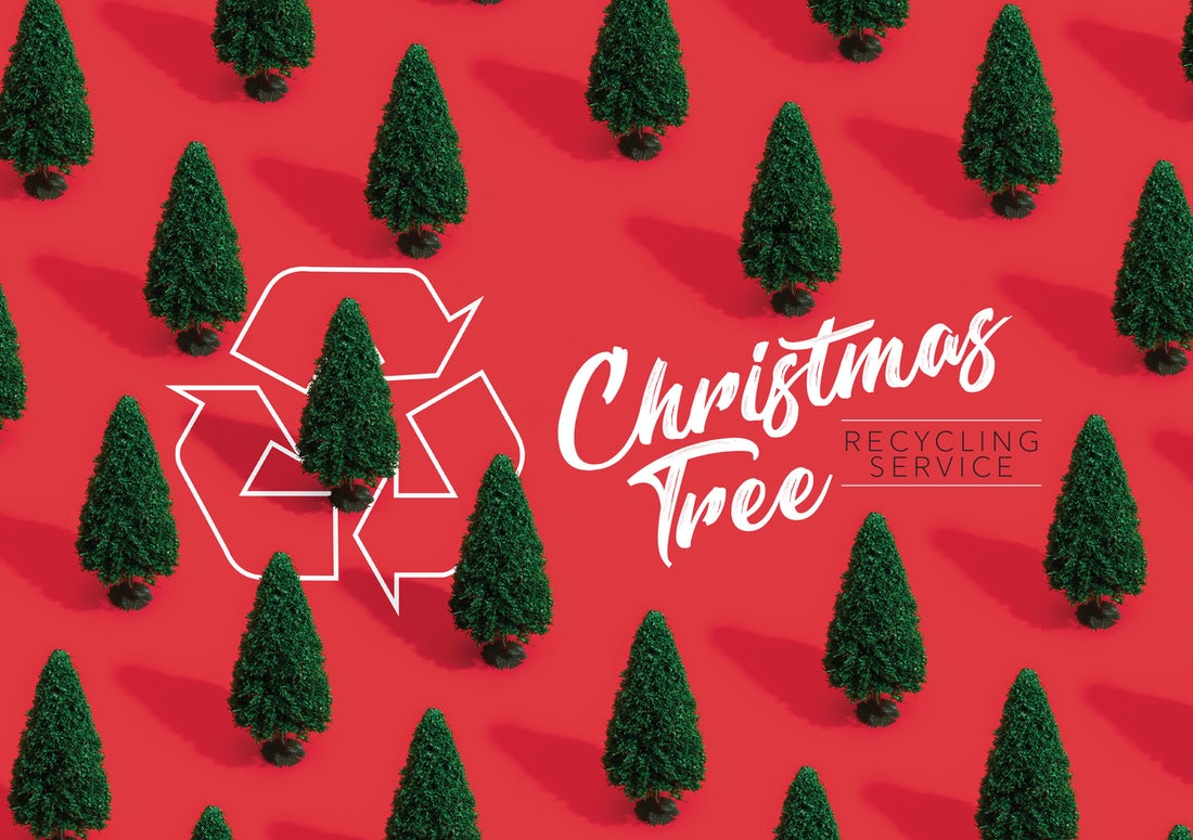 This year Cairn are pleased to offer all residents a Christmas tree recycling service.  Choose your development from the list below for details on collection dates and drop off points.