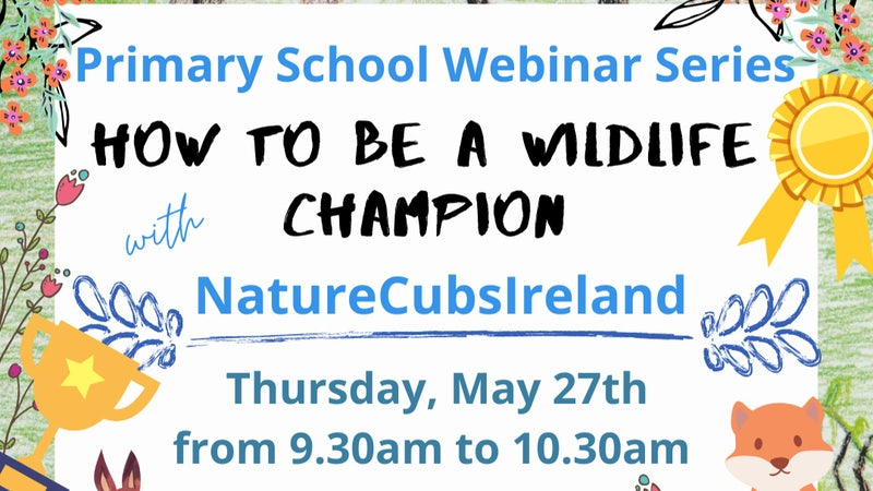 How to be a Wildlife Champion