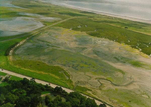 North Bull Island Feature