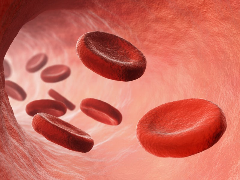 How Your Blood Clots